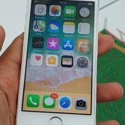 IPhone 5s/16gb Kondisi Baik,Kelengkapan Hp,Charger,Dus (26780199) di Kota Jakarta Barat