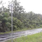 Tanah Pinggir Jalan Bagus Gudang, Lampung (26815423) di Kab. Way Kanan