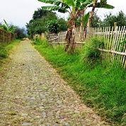 Tanah Datar Area Perkebunan Dan Vila Dibatu (26924087) di Kota Batu