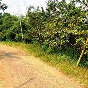 Lahan Dekat Pemukiman Luas 620m2 Cocok Buat Vila (26924819) di Kota Batu