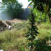 Tanah Kavling 3 Unit Jejer Di Kawasan Putri Juanda Sedati Sidoarjo (26950423) di Kab. Sidoarjo