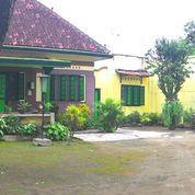 Rumah Di Kraton Yogyakarta (26972491) di Kota Yogyakarta