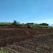 Tanah Kavling Free SHM Belakang BNS Kota Batu Tanpa Bunga (27001791) di Kota Batu