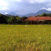Tanah Strategis Bagus Buat Cluster Cibiru Kota Bandung (27015471) di Kota Bandung