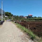 Tanah Kavling Siap Bangun Dan Rumah Belakang BNS Kota Batu (SHM) Tanpa Bank (27017647) di Kota Batu