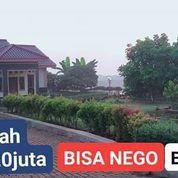 Tanah Kavlingan Murah View Indah Dan Bebas Banjir (27031667) di Kab. Bogor