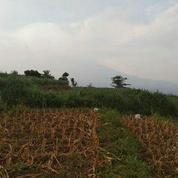 Tanah Kavling Siap Bangun Belakang BNS Kota Wisata Batu Malang Jawa Timur Free SHM (27038375) di Kota Batu