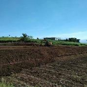Tanah Kavling Siap Bangun Belakang Wisata Kota Batu (Tanpa Bunga) Free SHM (27060195) di Kota Batu
