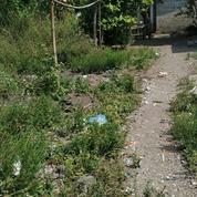 Tanah 100Meter Dekat Kampus UII Jakal Jogja (27071371) di Kota Yogyakarta