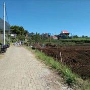 Tanah Kavling Siap Bangun Dan Rumah Belakang BNS Kota Batu Malang (Free SHM) (27073235) di Kota Batu