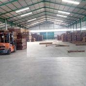 Pabrik Kayu Masih Aktif Fasilitas Lengkap Siap Produksi Gresik (27096207) di Kota Surabaya