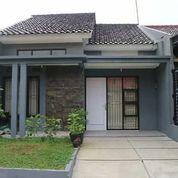Rumah Murah Di Jl Pancasan Baru Kota Bogor (27117587) di Kota Bogor