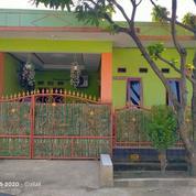 Rumah Perumahan Puri Arta Sentosa Bojong Gede Luas 60 Rp 350 Juta 2KT 1 KM SHM (27119459) di Kab. Bogor