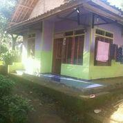 Murah Rumah Di Kampung Udara Sejuk Sudah SHM Harga Masih Nego (27126371) di Kab. Purwakarta