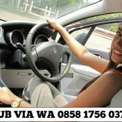 Driver Antar Jemput Caddy (27129075) di Kota Jakarta Timur