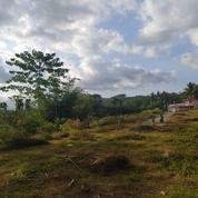 Tanah Kavling Teras Jember Tahap 2 (27176571) di Kab. Jember