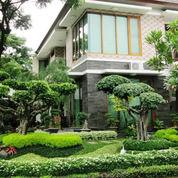 taman minimalis rumah harga murah (2718196) di Kota Tangerang Selatan