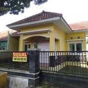 Rumah 189m2 Halaman Luas Satu Lokasi Dengan Citra Land Kota Malang (27201263) di Kota Malang