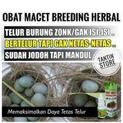 Obat Macet Breeding Untuk Burung Kicau Murai Cucak Rowo Jalak Bali Lovebird Dll (27212811) di Kota Jakarta Pusat