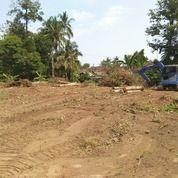 Diskon 25%, Tanah Kapling Murah Rejodani Residence (27216807) di Kota Yogyakarta