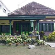 Tanah 600 Meter Di Pusat Kota Yogyakarta (27293215) di Kota Yogyakarta