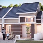 Rumah Modern Minimalis Lokasi Strategis Cuma 300 Jutaan Di Jalan Sriwijaya, Sumbersari, Jember (27310947) di Kab. Jember