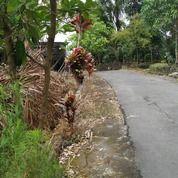 Tanah Di Daerah Wisata -- Pinggir Jalan - Akses Mudah - Lingkungan Bagus (27377775) di Kota Yogyakarta