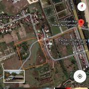 Tanah Di Jenu, Tuban-Jatim . Dekat Pantai Cemara (27383507) di Kab. Tuban