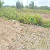 Tanah Lokasi Jl. Baru R.H Fisabilillah -Tanjungpinang (27438111) di Kota Tanjung Pinang