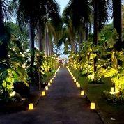 Lampu Pernikahan Wedding, Dinner, Party Murah Di Bali (27458919) di Kab. Badung