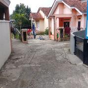 Rumah 2 Unit Dalam Satu Lokasi Di Kp. Muruharja, Ciapus Bogor (27474223) di Kota Bogor