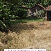 Tanah Panongan 2.700m2 Siap Pakai Di Kab Tangerang Banten (27483443) di Kab. Tangerang