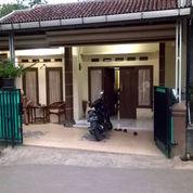 Rumah Murah Luas Dan Strategis Dekat Jl. Raya Cijayanti, Babakan Madang Bogor (27487615) di Kota Bogor