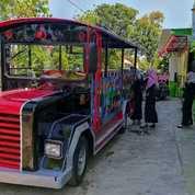 Kereta Wisata Mobil Lengkap STNK BPKB Lampu Hias Odong (27488395) di Kab. Brebes