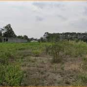 Tanah Purwomartani 120an, Legalitas SHMP Bonus Free BPHTB (27533707) di Kab. Sleman