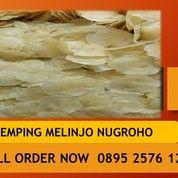 Produsen Emping Melinjo, Kualitas Super Asli 0895 2576 1288 Sekitar Kepulauan Riau (27606055) di Kab. Lingga