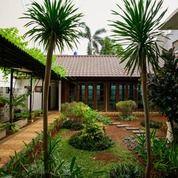 Rumah Mewah Pejaten Full Furnished Jakarta Selatan (27616895) di Kota Bekasi
