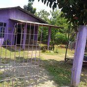 Tanah Desa Dangdang Cisauk Tangerang (27619335) di Kab. Tangerang