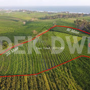 Tanah Pantai Kelecung Tegal Mengkeb Tabanan (27623655) di Kab. Tabanan