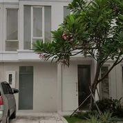 Rumah Grand Pakuwon Adelaide Termurah Di Surabaya Barat (27630435) di Kota Surabaya