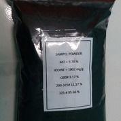 Premium Karbon Aktif - Mesh Dan Powder Grosir (27637907) di Kota Tangerang