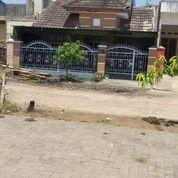 Rumah Perumahan Nusa Tamalanrea Indah. (27678935) di Kota Makassar