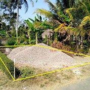 Mantap! Lahan Strategis Lokasi Bisnis, Doplang - Purworejo (27702871) di Kab. Purworejo