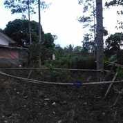 Heru Ada Tanah Luas.2000.M2 Certifkat Kabupaten:.Semarang . (27849355) di Kota Jakarta Selatan