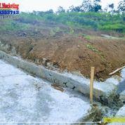 Kavling Profit Investasi Karangploso Malang (27854479) di Kota Malang