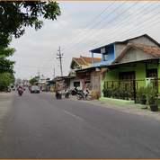 Tanah Matang Gratis Pajak Include Fasum 400 Jtan (27867575) di Kab. Sleman