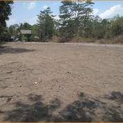 Tanah Murah Free BPHTB Utara Ponpes Pandanaran 3 Jt-An (27867963) di Kab. Sleman