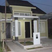 Rumah Jember Tengah Kota Murah (27871631) di Kab. Jember