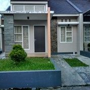 Rumah Di Jember Murah Tengah Kota (27871715) di Kab. Jember