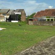 Tanah Kavling Jember Siap Bangun Luas Murah (27871831) di Kab. Jember